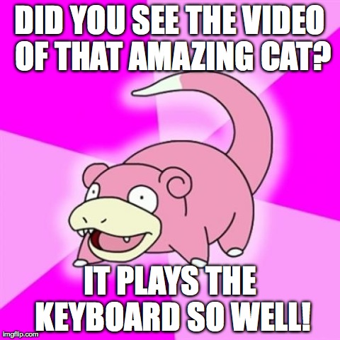 Slowpoke Meme | DID YOU SEE THE VIDEO OF THAT AMAZING CAT? IT PLAYS THE KEYBOARD SO WELL! | image tagged in memes,slowpoke | made w/ Imgflip meme maker