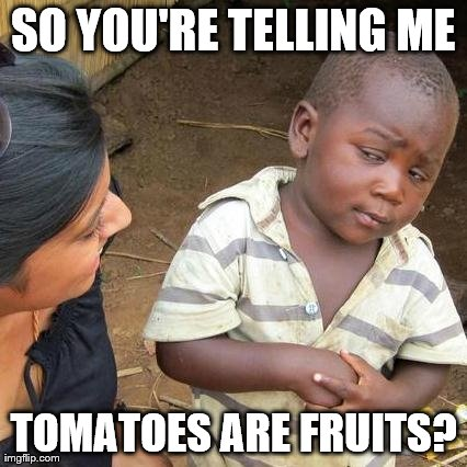 Me At Five Years Old... | SO YOU'RE TELLING ME TOMATOES ARE FRUITS? | image tagged in memes,third world skeptical kid | made w/ Imgflip meme maker