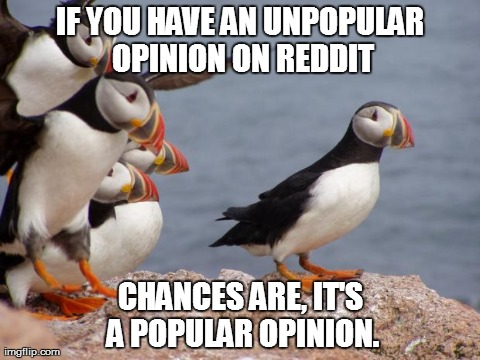 IF YOU HAVE AN UNPOPULAR OPINION ON REDDIT CHANCES ARE, IT'S A POPULAR OPINION. | image tagged in popular opinion puffin,AdviceAnimals | made w/ Imgflip meme maker