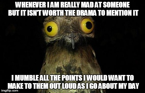 Weird Stuff I Do Potoo Meme | WHENEVER I AM REALLY MAD AT SOMEONE BUT IT ISN'T WORTH THE DRAMA TO MENTION IT I MUMBLE ALL THE POINTS I WOULD WANT TO MAKE TO THEM OUT LOUD | image tagged in memes,weird stuff i do potoo,AdviceAnimals | made w/ Imgflip meme maker