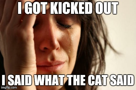 First World Problems Meme | I GOT KICKED OUT I SAID WHAT THE CAT SAID | image tagged in memes,first world problems | made w/ Imgflip meme maker
