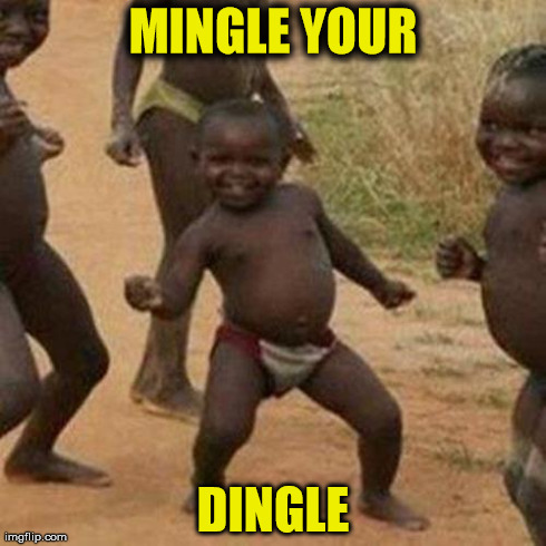 Third World Success Kid Meme | MINGLE YOUR DINGLE | image tagged in memes,third world success kid | made w/ Imgflip meme maker