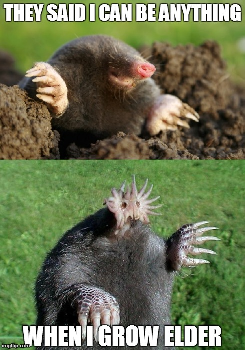 Elder starnose mole | THEY SAID I CAN BE ANYTHING WHEN I GROW ELDER | image tagged in elder thing,starnose mole | made w/ Imgflip meme maker