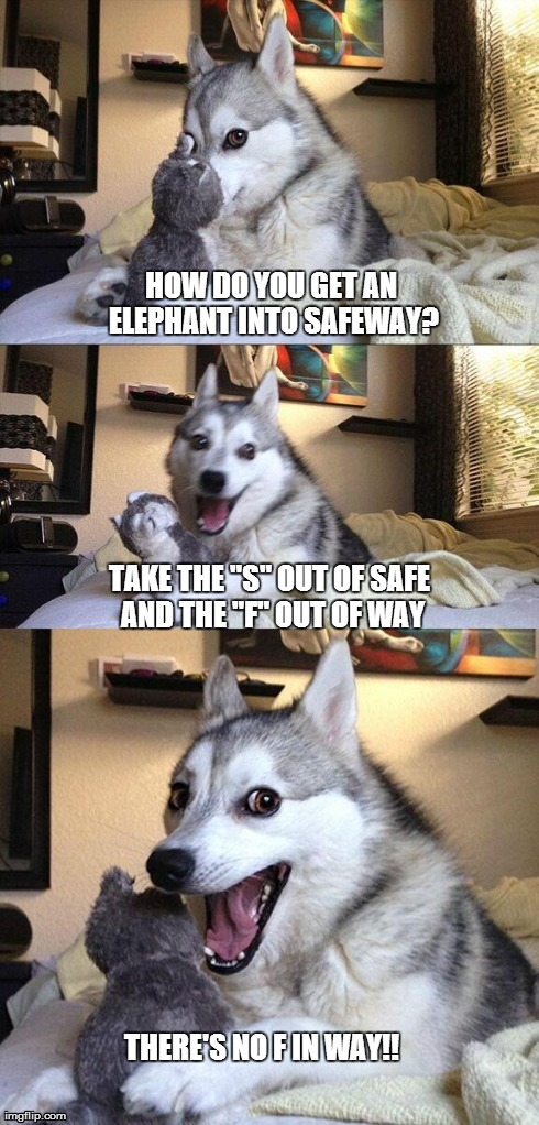 "Bad Pun Dog Meme | HOW DO YOU GET AN ELEPHANT INTO SAFEWAY? TAKE THE ""S"" OUT OF SAFE AND THE ""F"" OUT OF WAY THERE'S NO F IN WAY!! 