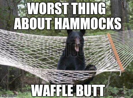 Image result for hammock meme