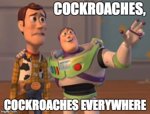 Welcome to Another Korean Summer... FML :o( | COCKROACHES, COCKROACHES EVERYWHERE | image tagged in memes,x x everywhere,summer,cockroaches,korea | made w/ Imgflip meme maker