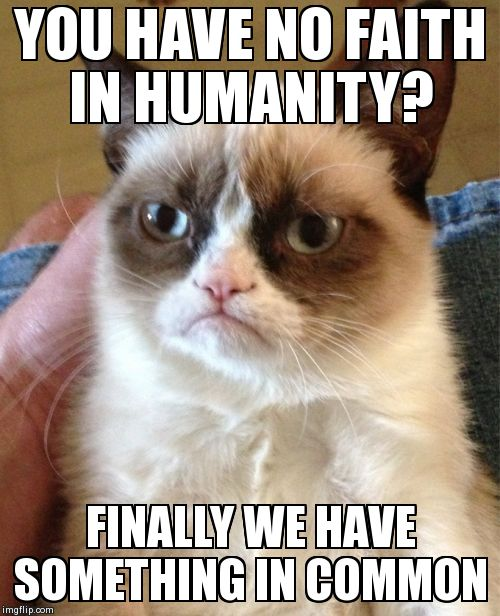 Grumpy Cat Meme | YOU HAVE NO FAITH IN HUMANITY? FINALLY WE HAVE SOMETHING IN COMMON | image tagged in memes,grumpy cat | made w/ Imgflip meme maker