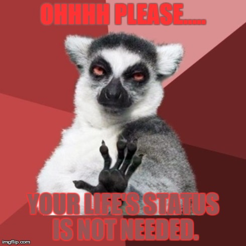 Chill Out Lemur Meme | OHHHH PLEASE..... YOUR LIFE'S STATUS IS NOT NEEDED. | image tagged in memes,chill out lemur | made w/ Imgflip meme maker