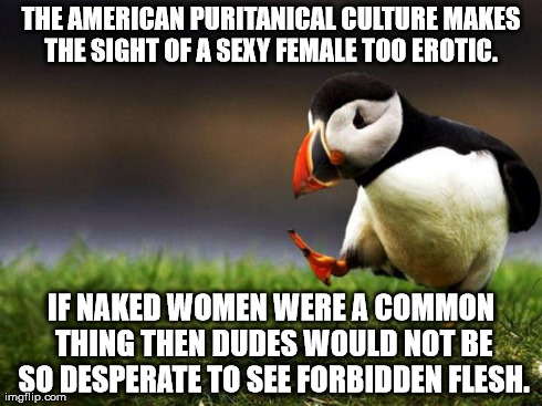 The core of male adolescence angst | THE AMERICAN PURITANICAL CULTURE MAKES THE SIGHT OF A SEXY FEMALE TOO EROTIC.  IF NAKED WOMEN WERE A COMMON THING THEN DUDES WOULD NOT BE SO | image tagged in memes,unpopular opinion puffin | made w/ Imgflip meme maker