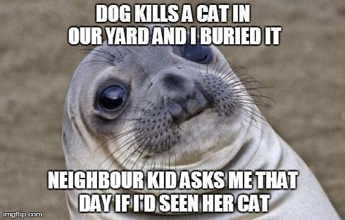 awkward moment sealion meme dog kills a cat in our yard and i buried