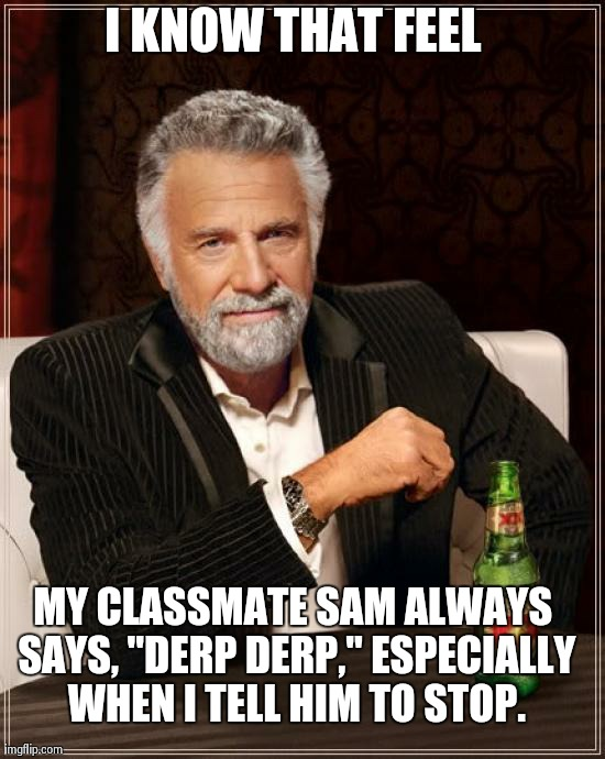 "The Most Interesting Man In The World Meme | I KNOW THAT FEEL MY CLASSMATE SAM ALWAYS SAYS, ""DERP DERP,"" ESPECIALLY WHEN I TELL HIM TO STOP. 