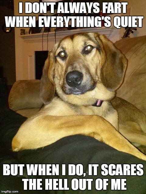 Bark Like A Dog Meme