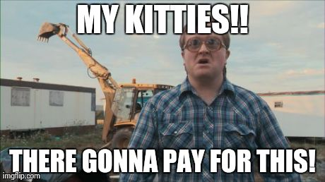 Trailer Park Boys Bubbles | MY KITTIES!! THERE GONNA PAY FOR THIS! | image tagged in memes,trailer park boys bubbles | made w/ Imgflip meme maker