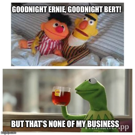 That's none of my business | GOODNIGHT ERNIE, GOODNIGHT BERT! BUT THAT'S NONE OF MY BUSINESS | image tagged in kermit,bert,ernie,sesame street,instagram,facebook | made w/ Imgflip meme maker