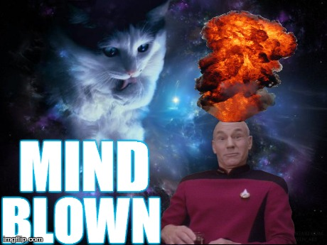 Captain Picard Mind Blown | MIND  BLOWN | image tagged in memes,funny,animals,captain picard,mind blown,space cat | made w/ Imgflip meme maker