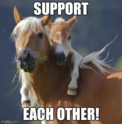 Foal Of Mine | SUPPORT EACH OTHER! | image tagged in memes,foal of mine | made w/ Imgflip meme maker