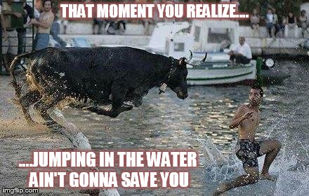 That Moment You Realize.... | THAT MOMENT YOU REALIZE.... ....JUMPING IN THE WATER AIN'T GONNA SAVE YOU | image tagged in memes,funny,jumping | made w/ Imgflip meme maker