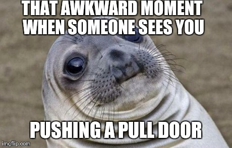 Awkward Moment Sealion Meme | THAT AWKWARD MOMENT WHEN SOMEONE SEES YOU PUSHING A PULL DOOR | image tagged in memes,awkward moment sealion | made w/ Imgflip meme maker
