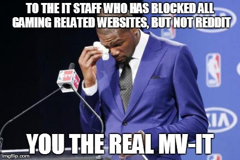 You The Real MVP 2 Meme | TO THE IT STAFF WHO HAS BLOCKED ALL GAMING RELATED WEBSITES, BUT NOT REDDIT YOU THE REAL MV-IT | image tagged in you da real mvp,AdviceAnimals | made w/ Imgflip meme maker