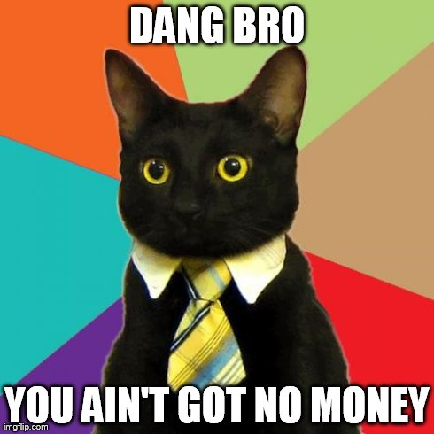 Business Cat Meme | DANG BRO YOU AIN'T GOT NO MONEY | image tagged in memes,business cat | made w/ Imgflip meme maker
