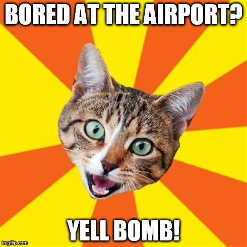 Bad Advice Cat Meme | BORED AT THE AIRPORT? YELL BOMB! | image tagged in memes,bad advice cat | made w/ Imgflip meme maker