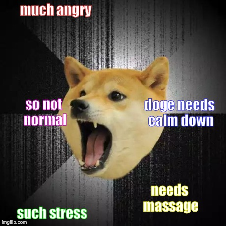 Insanity Doge | much angry such stress doge needs calm down needs massage so not normal | image tagged in insanity doge | made w/ Imgflip meme maker