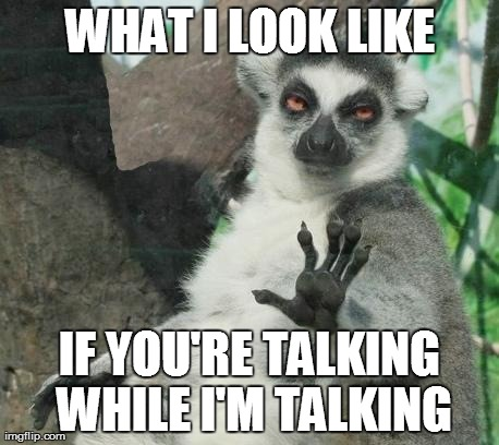Stoner Lemur Meme | WHAT I LOOK LIKE IF YOU'RE TALKING WHILE I'M TALKING | image tagged in memes,stoner lemur | made w/ Imgflip meme maker