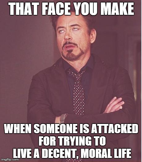 Decent, Moral Life | THAT FACE YOU MAKE WHEN SOMEONE IS ATTACKED FOR TRYING TO LIVE A DECENT, MORAL LIFE | image tagged in memes,face you make robert downey jr | made w/ Imgflip meme maker