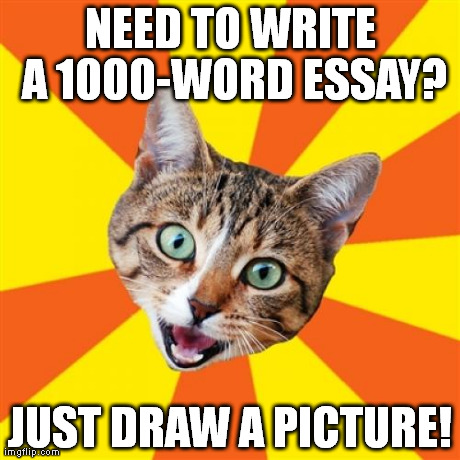 A picture is worth 1000 words. | NEED TO WRITE A 1000-WORD ESSAY? JUST DRAW A PICTURE! | image tagged in memes,bad advice cat | made w/ Imgflip meme maker