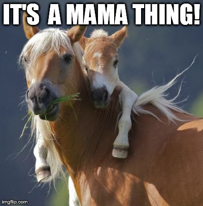 Foal Of Mine | IT'S  A MAMA THING! | image tagged in memes,foal of mine | made w/ Imgflip meme maker