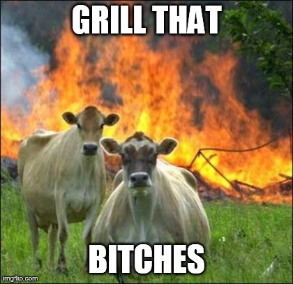 Evil Cows Meme | GRILL THAT B**CHES | image tagged in memes,evil cows | made w/ Imgflip meme maker