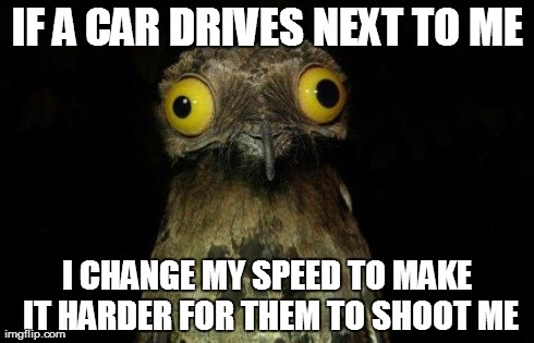 Crazy eyed bird | IF A CAR DRIVES NEXT TO ME I CHANGE MY SPEED TO MAKE IT HARDER FOR THEM TO SHOOT ME | image tagged in crazy eyed bird | made w/ Imgflip meme maker