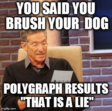 "Maury Lie Detector Meme | YOU SAID YOU BRUSH YOUR  DOG POLYGRAPH RESULTS ""THAT IS A LIE"" 