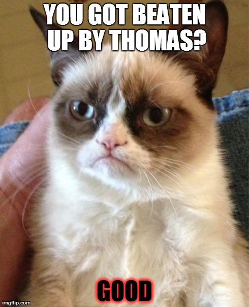 Grumpy Cat Meme | YOU GOT BEATEN UP BY THOMAS? GOOD | image tagged in memes,grumpy cat | made w/ Imgflip meme maker
