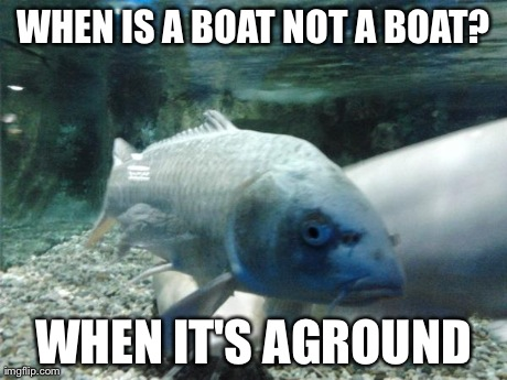fishman | WHEN IS A BOAT NOT A BOAT? WHEN IT'S AGROUND | image tagged in fishman | made w/ Imgflip meme maker