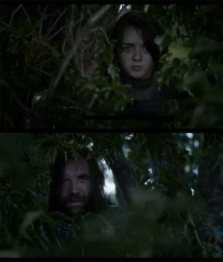 Lots of cunts - hound - game of thrones Meme Template