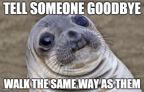 Awkward Moment Sealion | TELL SOMEONE GOODBYE WALK THE SAME WAY AS THEM | image tagged in memes,awkward moment sealion | made w/ Imgflip meme maker