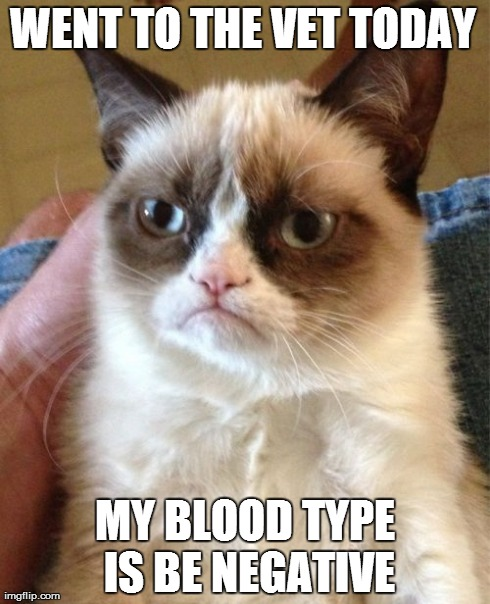 Grumpy Cat Meme | WENT TO THE VET TODAY MY BLOOD TYPE IS BE NEGATIVE | image tagged in memes,grumpy cat | made w/ Imgflip meme maker