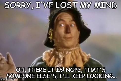 Scarecrow | SORRY, I'VE LOST MY MIND OH, THERE IT IS! NOPE, THAT'S SOMEONE ELSE'S, I'LL KEEP LOOKING... | image tagged in scarecrow | made w/ Imgflip meme maker
