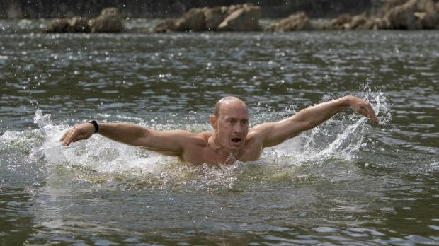 High Quality Putin Swimming Blank Meme Template