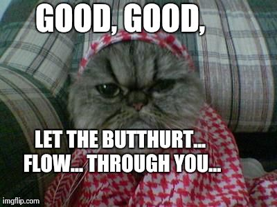GOOD, GOOD, LET THE BUTTHURT... FLOW... THROUGH YOU... | image tagged in jihad cat | made w/ Imgflip meme maker