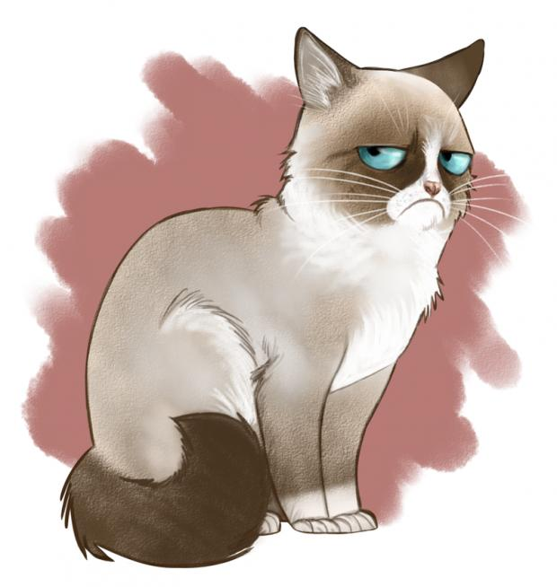 Grumpy Cartoon Cat Blank Template - Imgflip