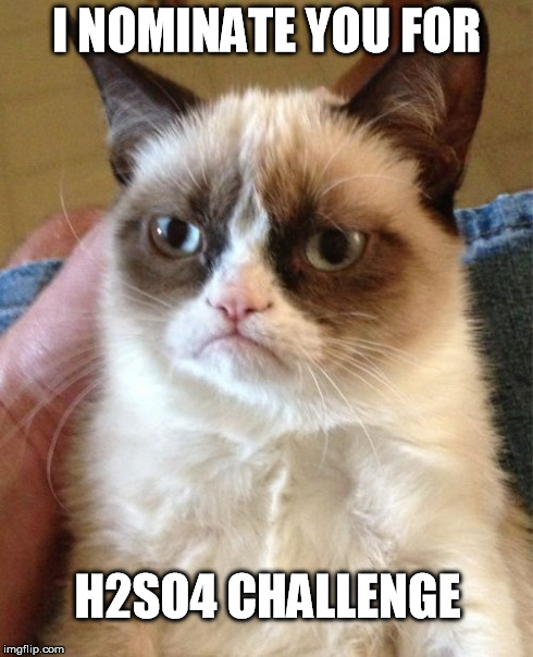 H2SO4 challenge | I NOMINATE YOU FOR H2SO4 CHALLENGE | image tagged in memes,grumpy cat,h2so4,challenge | made w/ Imgflip meme maker