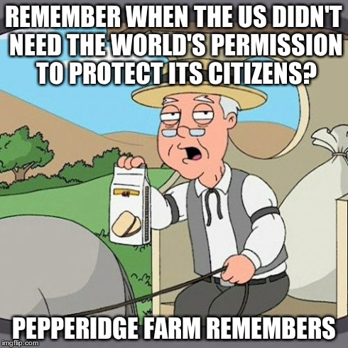 Remember When the US Didn't Need the World's Permission? | REMEMBER WHEN THE US DIDN'T NEED THE WORLD'S PERMISSION TO PROTECT ITS CITIZENS? PEPPERIDGE FARM REMEMBERS | image tagged in memes,pepperidge farm remembers,us,world's permission | made w/ Imgflip meme maker