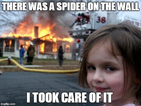 Disaster Girl | THERE WAS A SPIDER ON THE WALL I TOOK CARE OF IT | image tagged in memes,disaster girl | made w/ Imgflip meme maker