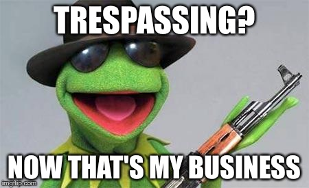 TRESPASSING? NOW THAT'S MY BUSINESS | image tagged in kermit | made w/ Imgflip meme maker