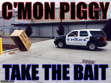 C'mon piggy | C'MON PIGGY TAKE THE BAIT | image tagged in pig,cops | made w/ Imgflip meme maker