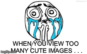 bxbhn cuteness overload imgflip