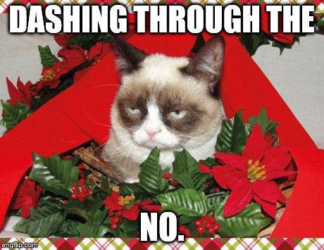 Grumpy Cat Mistletoe | DASHING THROUGH THE NO. | image tagged in memes,grumpy cat mistletoe,grumpy cat | made w/ Imgflip meme maker
