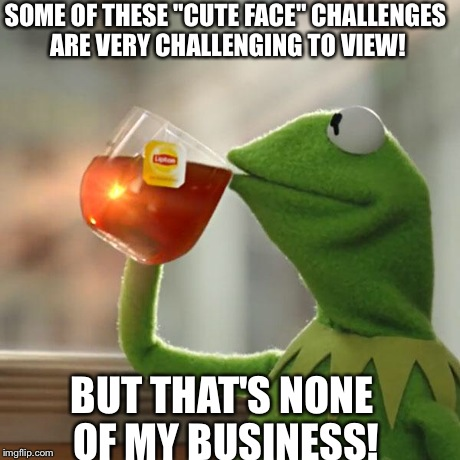 "But That's None Of My Business Meme | SOME OF THESE ""CUTE FACE"" CHALLENGES ARE VERY CHALLENGING TO VIEW! BUT THAT'S NONE OF MY BUSINESS! 